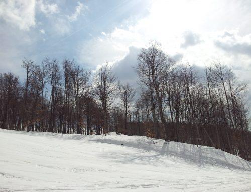 Stara planina, novi – stari ski centar Srbije